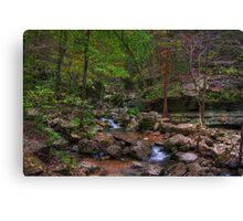Blanchard Springs Little Stream Canvas Print