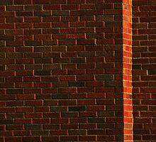 Another brick in the wall by Paul Kavsak