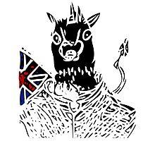 British Unicorn Photographic Print