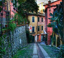 Portofino alley by oreundici