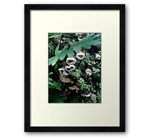 All together now - Sing Framed Print