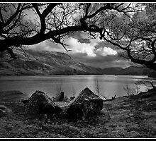 Ullswater framed by Shaun Whiteman