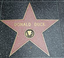 Donald Duck's Star on the Walk of Fame by Fike2308