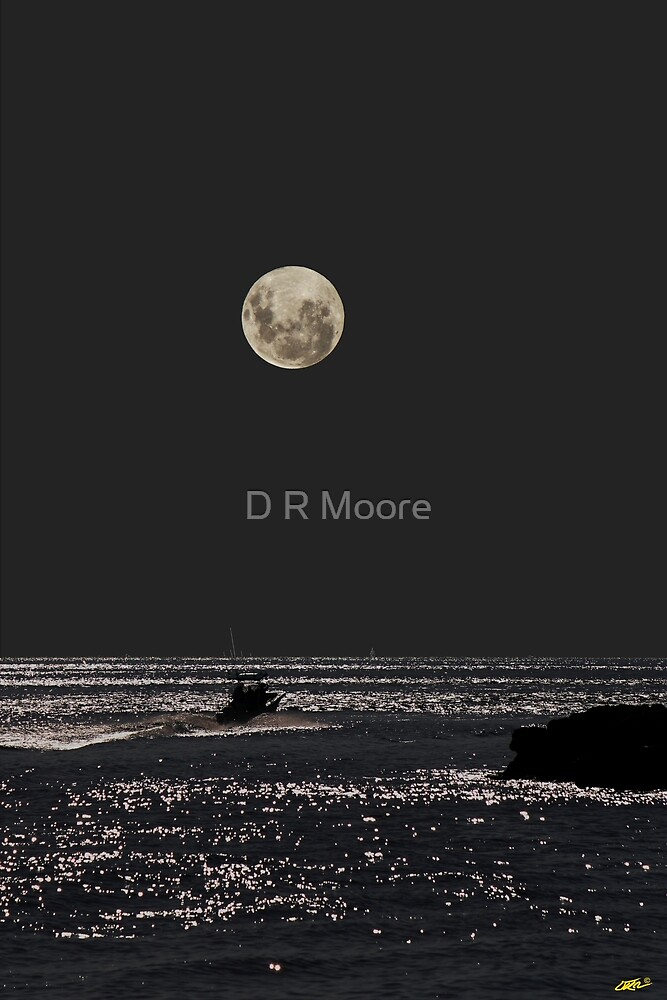 Night Boat Ride by D R Moore