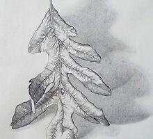 leaf 2. 11''x14''. graphite on paper . adam sturch by adam sturch