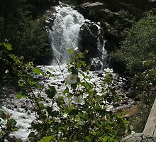 Helen Hunt Falls- Colorado Springs, Co by johntbell