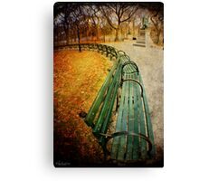 Central Park Benches Canvas Print