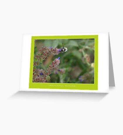 Macro: Beautiful  Nature - 4 Greeting Card