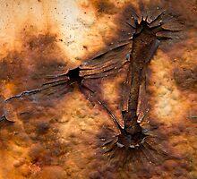 Eruption by Walter Quirtmair