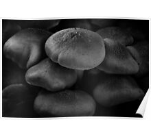 High Rise Mushrooms BW Poster