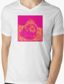 Who's the fairest of them all... Mens V-Neck T-Shirt