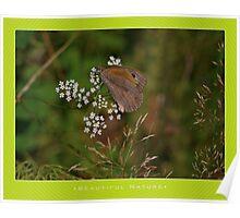 Macro: Beautiful  Nature - 11 Poster