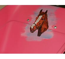 The Pink Wheelbarrow 2 Photographic Print