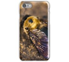 Vibrant Wings iPhone Case/Skin