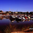 Kincardine Marina by Andrew Connell
