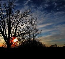 Tangerine Sunset 2 by nikspix
