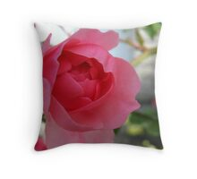 Summer's Blossoming Rose Throw Pillow
