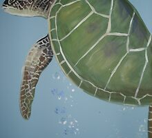 The turtle on the Wall by viveca