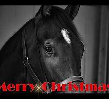 HORSE BLACK & WHITE CHRISTMAS CARD - MERRY CHRISTMAS by Cheryl Hall