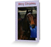 HORSE SNOWFLAKES - MERRY CHRISTMAS Greeting Card