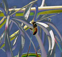 Bee on spider lily by ♥⊱ B. Randi Bailey