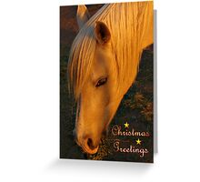 HORSE LOVER CHRISTMAS CARD - MERRY CHRISTMAS Greeting Card