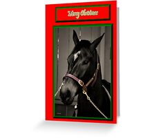 HORSE FACE BLACK & WHITE CHRISTMAS CARD - MERRY CHRISTMAS Greeting Card