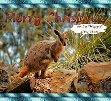 MERRY CHRISTMAS CARD - WALLABY - KANGAROO by Cheryl Hall