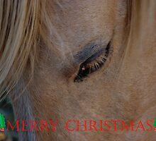 HORSE FACE CHRISTMAS CARD - MERRY CHRISTMAS by Cheryl Hall