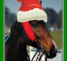 SANTA HAT HORSE CHRISTMAS CARD - MERRY CHRISTMAS CARD by Cheryl Hall