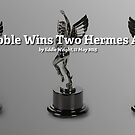 Redbubble Wins Two Hermes Awards! by Redbubble Community  Team