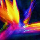 Abstract Wings Of Color by schiabor