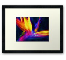 Abstract Wings Of Color Framed Print