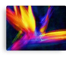 Abstract Wings Of Color Canvas Print