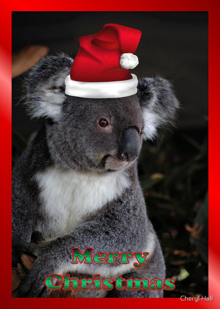 Quot Merry Christmas Card Koala Santa Quot By Cheryl Hall