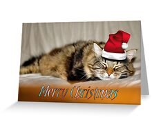 RELAXING KITTY CAT CHRISTMAS CARD Greeting Card