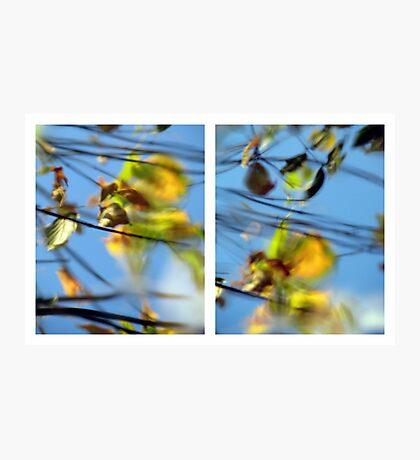 Another Day Goes By - Diptych Photographic Print