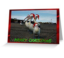PELICAN FAMILY CHRISTMAS CARD Greeting Card