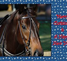 HORSE CHRISTMAS CARD STARS - MERRY CHRISTMAS & HAPPY NEW YEAR by Cheryl Hall
