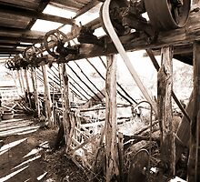 No More to Shear - Disused Shearing Stand by Douglas JD Rodgers