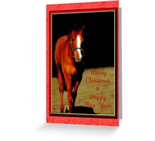 BEAUTIFUL HORSE CHRISTMAS CARD - MERRY CHRISTMAS & HAPPY NEW YEAR Greeting Card