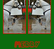 TWIN DOUBLE WHITE HORSE CHRISTMAS CARD - MERRY CHRISTMAS by Cheryl Hall