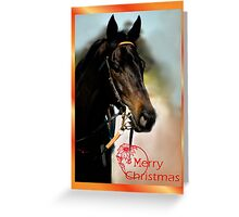HORSE - MERRY CHRISTMAS CARD Greeting Card