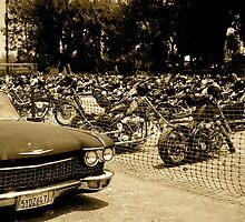 Sixties by cventresca