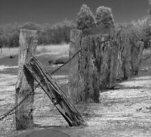 Salt Pan Fence by Peter Pevy