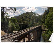Thomson River Bridge Walhalla Poster