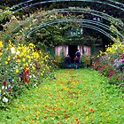 Monet's Garden, France by Deb22
