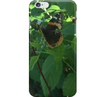 Ragged Butterfly iPhone Case/Skin