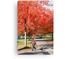 Walking the Dog in a Park, Vancouver City, Canada  Canvas Print