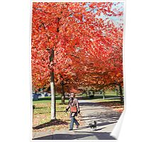 Walking the Dog in a Park, Vancouver City, Canada  Poster